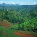 Tausend Hügel Ruandas
