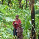 Kinder in den Bananenstauden